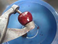 Guisadora Duncan: Mermelada de cerezas, las tres preguntas y el deshuesador