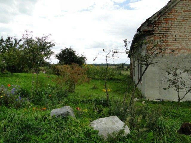 Okolice Tolkmicka
