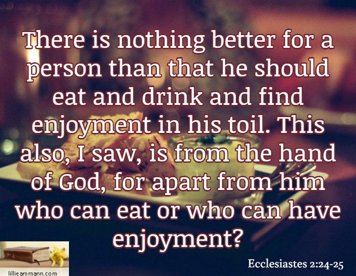 There is nothing better for a person than that he should eat and drink and find enjoyment in his toil. This also, I saw, is from the hand of God, for apart from him who can eat or who can have enjoyment? / Ecclesiastes 2:24-25