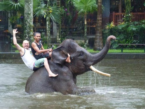 I will be doing this in my backyard with my own future pet elephant :)