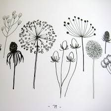 Image result for interesting drawings of nature