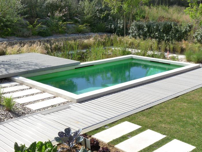 Piscine naturelle BioNova - La filtration biologique - Pool BioNova