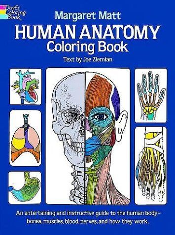 151 best images about Anatomy And