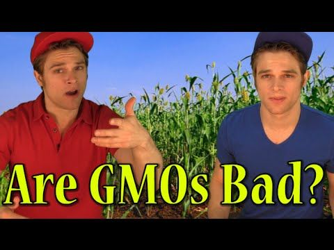 Are GMOs bad for you?  Should they be banned or labeled?  In this bipartisan political comedy we hear both sides. #GMO #politics #genetically #political comedy