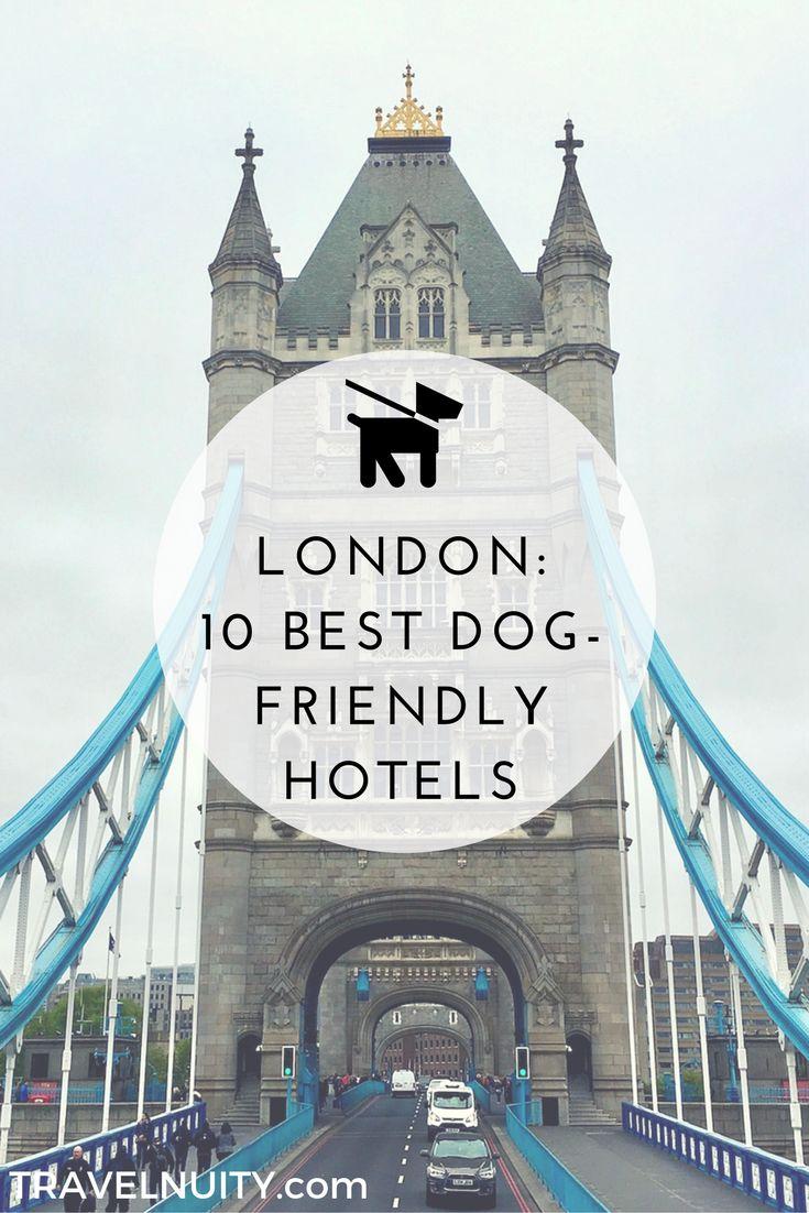 10 Best Dog Friendly Hotels In London