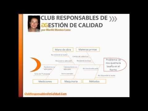 Análisis Causa y Efecto | Club Responsables de Calidad