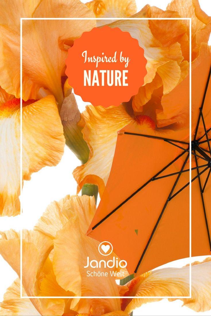 1000+ Ideas About Sonnenschirm Terrasse On Pinterest Sonnenschirm Balkon Terrasse