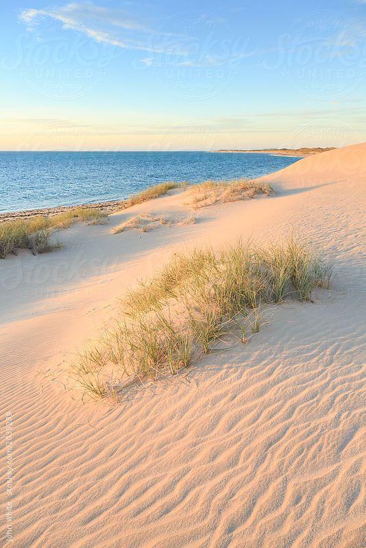 Cape Range National Park. Western Australia.