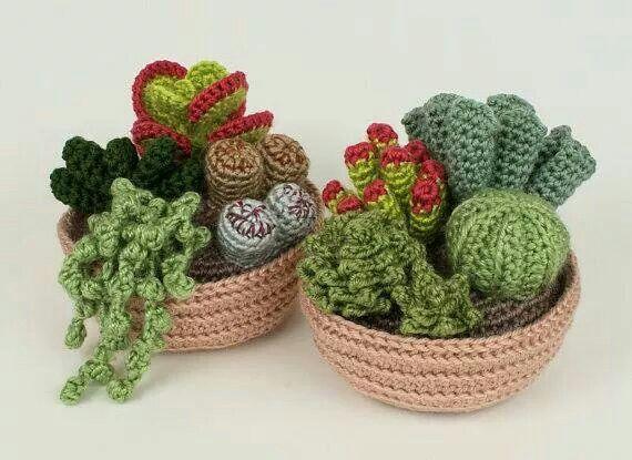 Háčkované kaktusy a sukulenty