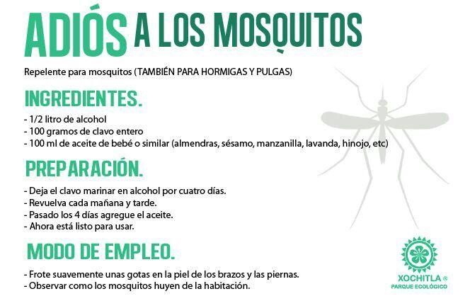 Repelente de mosquitos casero