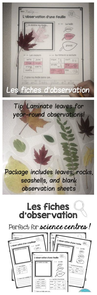 These observation sheets are the perfect addition to your science centres! Students can independently explore and examine your classroom collection of leaves, rocks, and seashells, while remaining engaged and productive. Two extra observation sheets are provided (masc. & fem.) so that students can follow the same familiar format when observing a variety of objects.