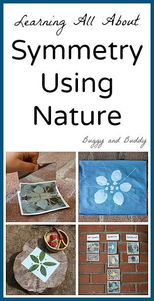 Learning about Symmetry in the Outdoors (Lots of activities for kids!)~ Buggy…