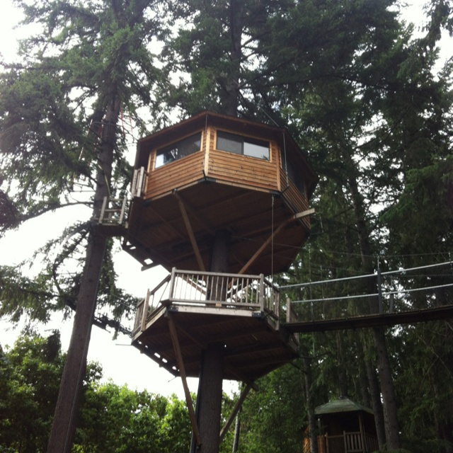 33 Best Images About Tree House Camping Oregon On
