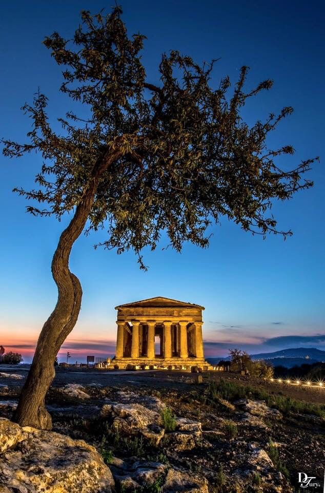 Quiet, beauty , The Valley of the temples #Agrigento #Sicily