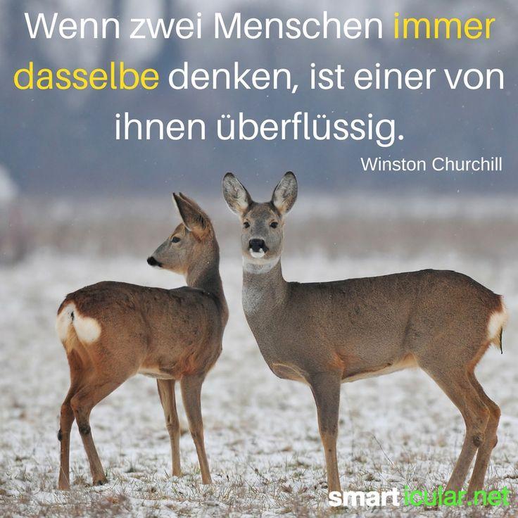 Wenn zwei Menschen immer dasselbe denken, ist einer von ihnen überflüssig. - Winston Churchill