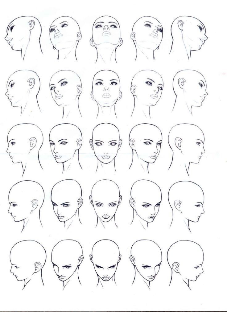 Body Drawing Reference Google Search Face Drawing Reference Drawing Tutorial Face Face Drawing