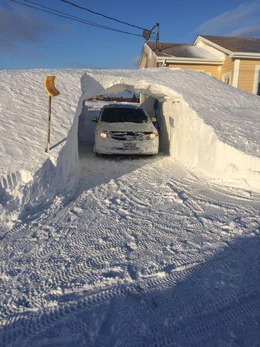 Après tempête de neige. E8P1V7
