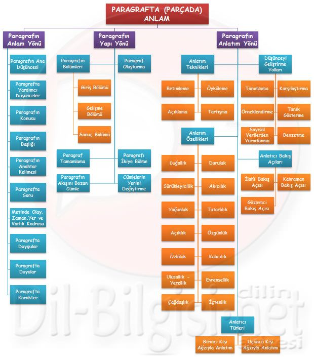 paragrafta anlam 8. sınıf şema ile ilgili görsel sonucu