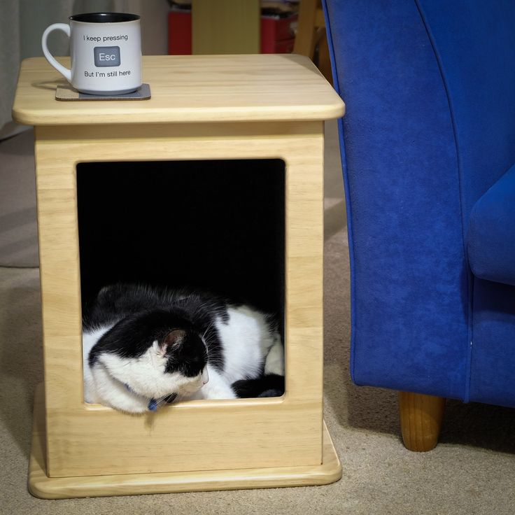 Image of Cat Bed/Side Table