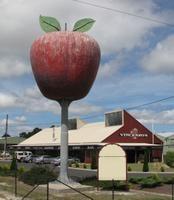 The Big Apple?!