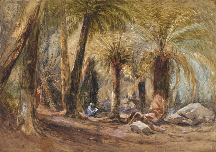 "John Skinner PROUT ""Fern Tree Gully, Table Mountain, Hobart Town, Van Diemen's Land"" 1844"