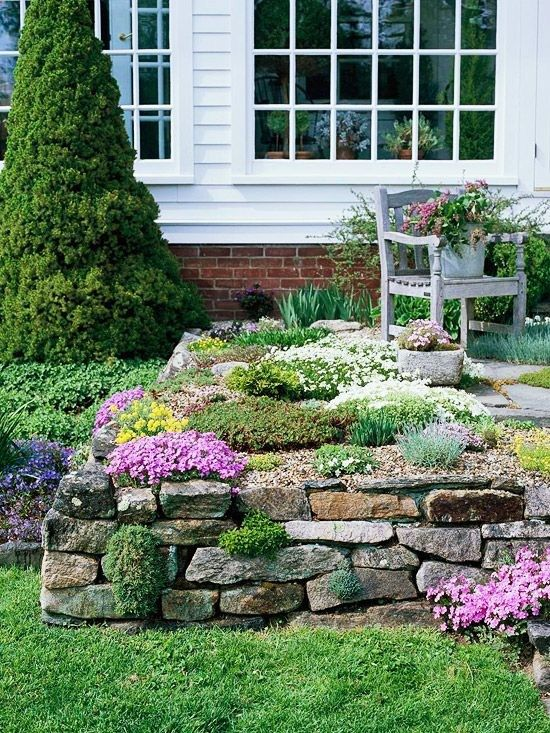 Front Yard Rock Garden. Even if you dont have a naturally rocky site, you can easily create one. In this front yard, a stone wall offers an ideal foundation and border for a variety of low-growing alpine classics, including Aubrieta Royal Blue, Phlox subulata, and Potentilla. Gypsophila franzii and Dianthus Tiny Rubies fill crevices between stones and help to integrate the stone wall with the rest of the terrace garden