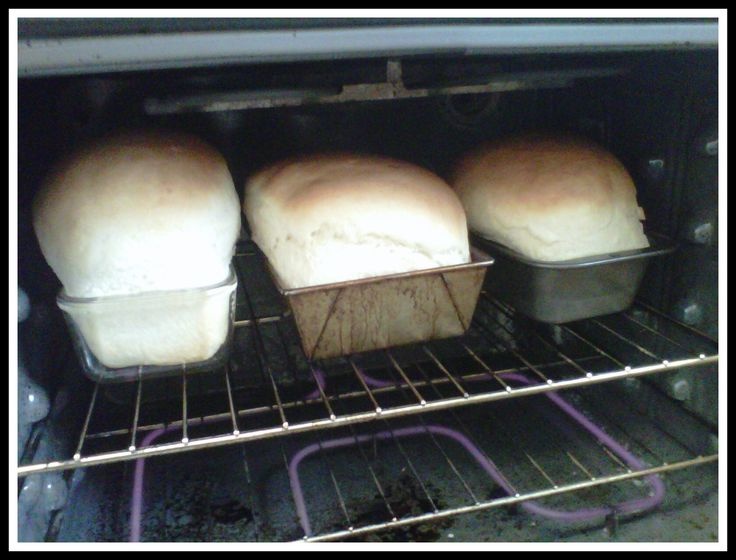 The best homemade bread recipe ever! I don't think it is possible to mess this recipe up! Pin now and read later!
