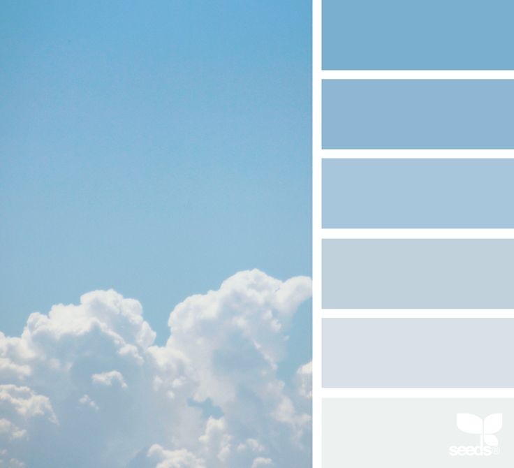 Colors of the sky evoke clarity and calmness, great for a peaceful and confident brand image.   { sky tones } image via: @thebungalow22