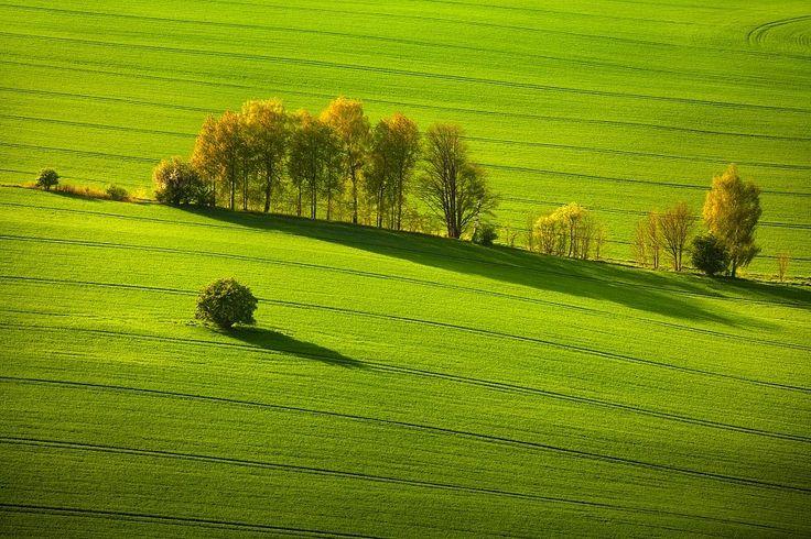 Spring Saxon Switzerland by Daniel Řeřicha on 500px