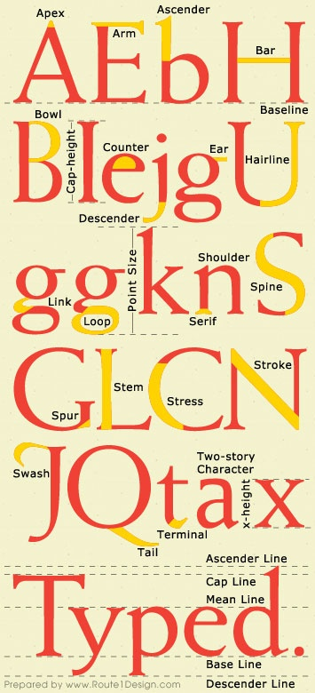 A useful chart depicting 'The Anatomy of Type'. #inspiration