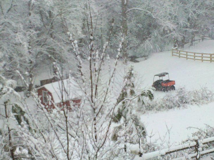 best 64 blue ridge georgia farm stay bed & breakfast images on