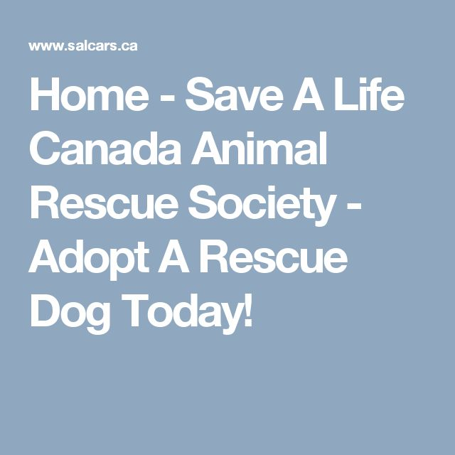 Home - Save A Life Canada Animal Rescue Society - Adopt A Rescue Dog Today!