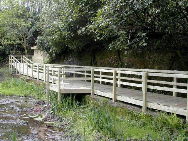 Decked walkway and bird hide