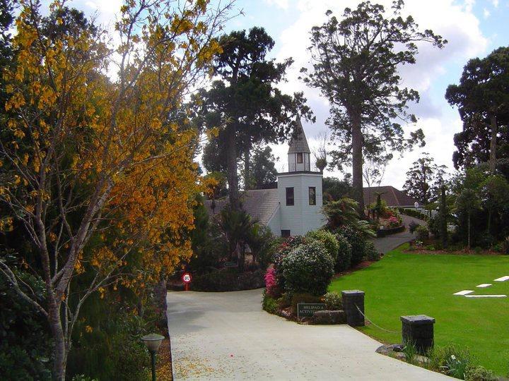 Waitakere Estate, Auckland, NZ