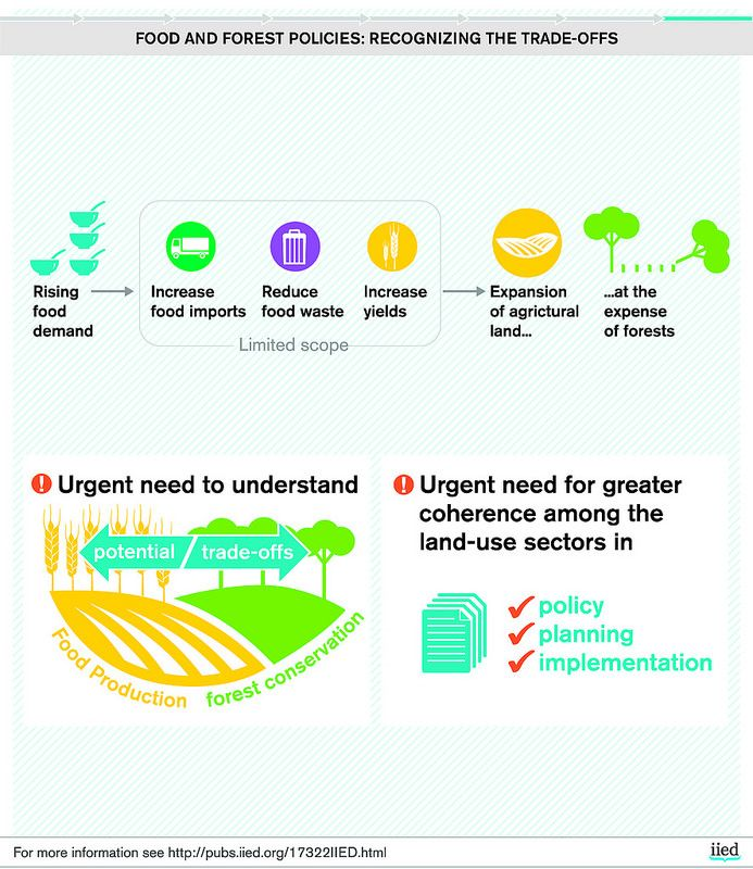 Food and forest policies: recognising the trade-offs | by iied.org