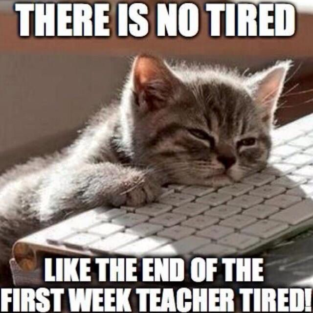 #Teacherhumour Hang in there the first week is almost done!