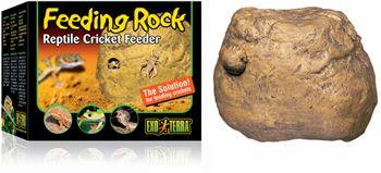 feeder rock for feeding your reptile