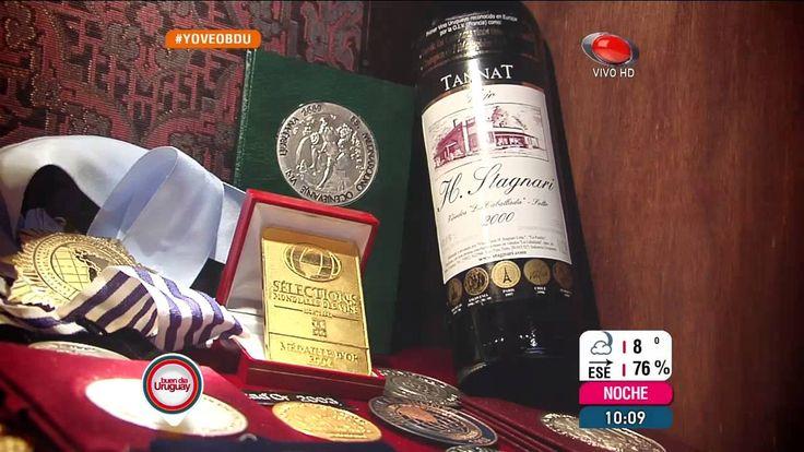 Vinos Uruguayos : Bodega Stagnari , Cata de vinos.  (5915)