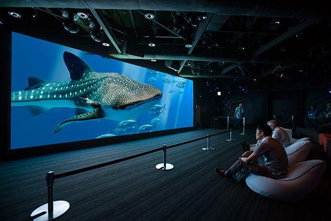 美ら海水族館の世界が東京・銀座に登場!ソニービルで「48th Sony Aquarium」開催 | ニュース - ファッションプレス