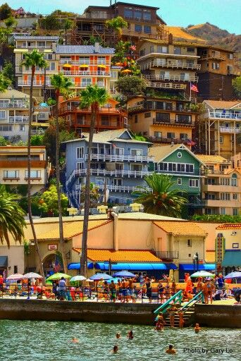 Catalina Island (off the coast of California) is the perfect place for a weekend getaway!