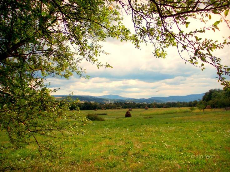 Zarand Land-Halmagiu, Arad County, Romania