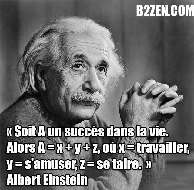 Citaten Albert Einstein Hati : Best accounting memes images on pinterest cat love