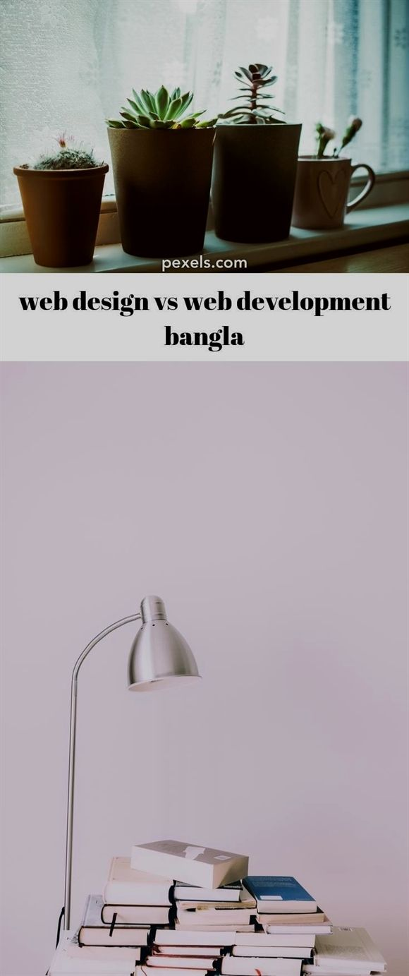 web design vs web development bangla_668_20190225045416_57