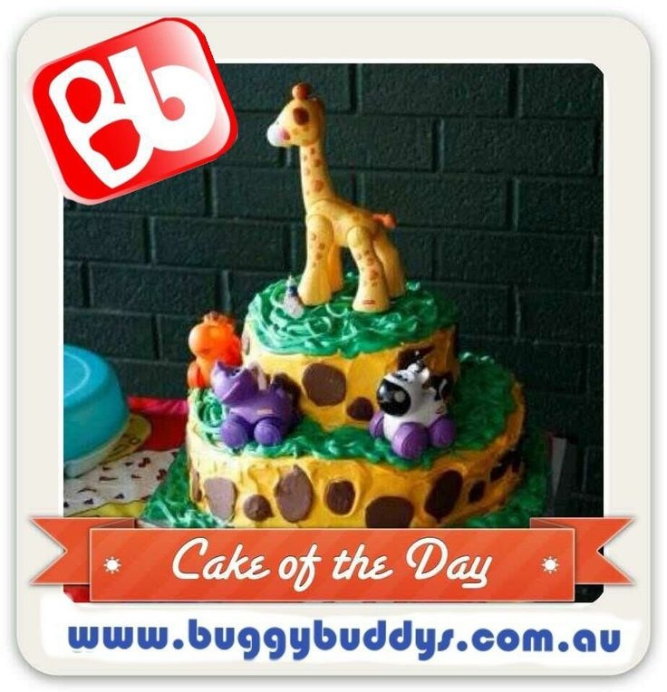 Baby Shower Cakes Perth Wa ~ Best safari theme everything images on pinterest
