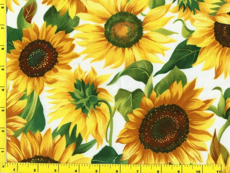 Big Summer Sunflowers on White Quilting Fabric by Yard ...