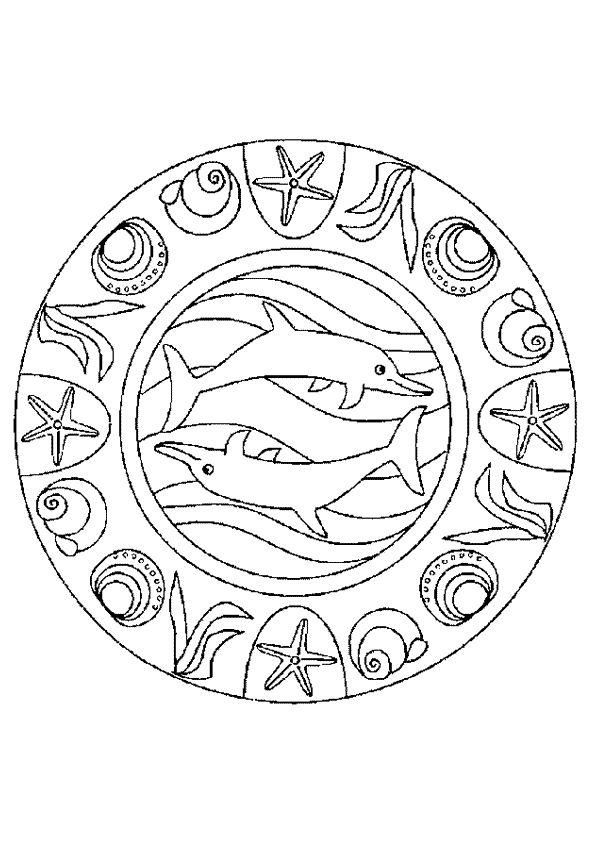 Mandala dauphin avec de jolies coquillages, à colorier