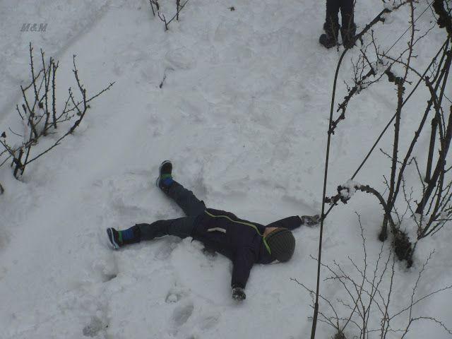 M&M: il nostro mondo in un click: nuotata nella neve...