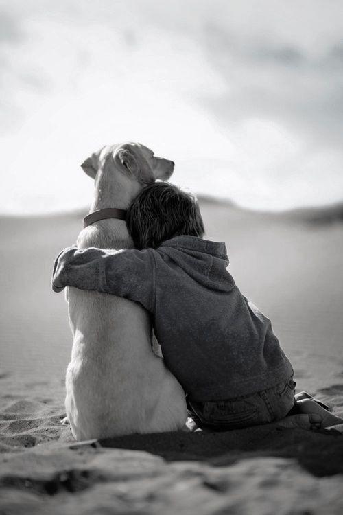 Hoje meu cão fez isso comigo; nunca deixando minha visão e ser excessivamente amável e me dando muitos beijos molhados ...