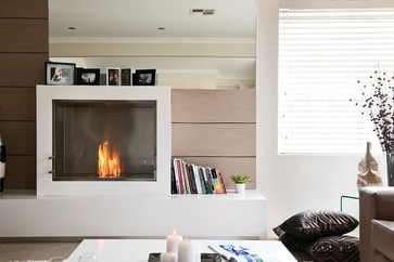 21 best eco friendly fireplaces studio v40 images on for Eco friendly fireplace