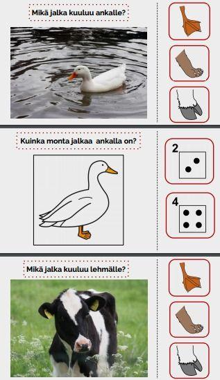 Tarinassa harjoitellaan tunnistamaan onko eläimellä sorkat, kaviot, tassut vai räpylät, sekä kuinka monta jalkaa eläimellä on.